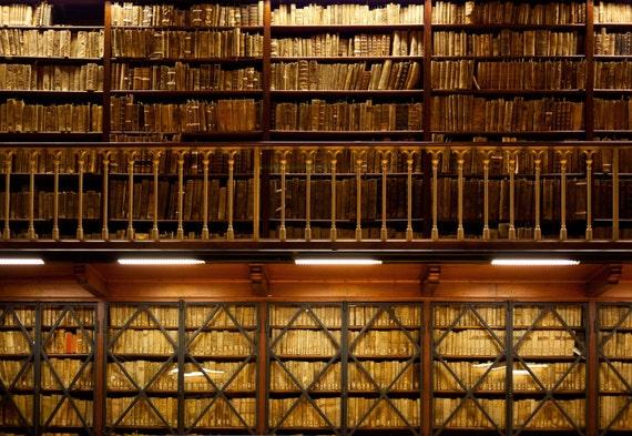 Book Store Backdrop Shelf Bookrack Library Bookcase