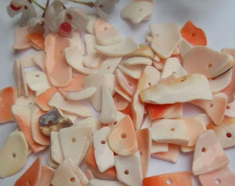 set of 30 shell chips beads
