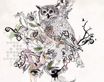 "Owl Art, Black Ink Owl Illustration, Woodland Animal Artwork, 11x14"" Art Print of Owl Drawing"