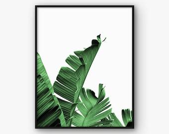 Banana Leaves Print, Palm Leaves Print, Palm Wall Art, Tropical Wall Art, Palm Decor, Palm Printable, Botanical Wall Art, Green Leaves Print