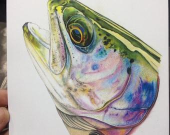 """MINI 5.25x7"""" Rainbow trout Print limited edition"""