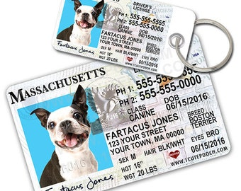 Massachusetts Driver License Custom Pet ID Tags and Wallet Card - Dog ID Tag - Personalized Pet ID Tags