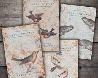 Birds Carte Postale - Digital Collage Sheet Download - Digital Paper Printables