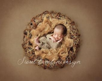 Digital Prop/Backdrop Newborn Photography Natural Nest