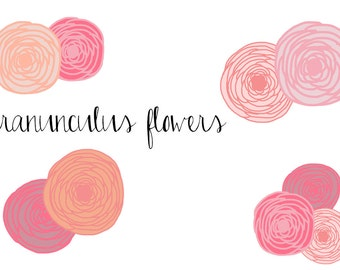 Ranunculus Flowers Clip Art - Instant Download  - personal or commercial use - hand drawn flower clip art