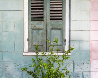 French Quarter New Orleans Window Greeting Cards