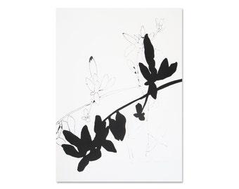 Minimalist black and white botanical print