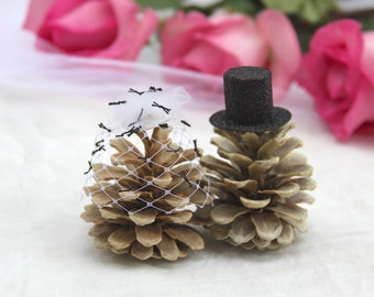 Wedding cake toppers, pinecones Rustic Mountain Wedding bleached pinecones, birdcage wedding fascinator, black top hat, veil fascinator