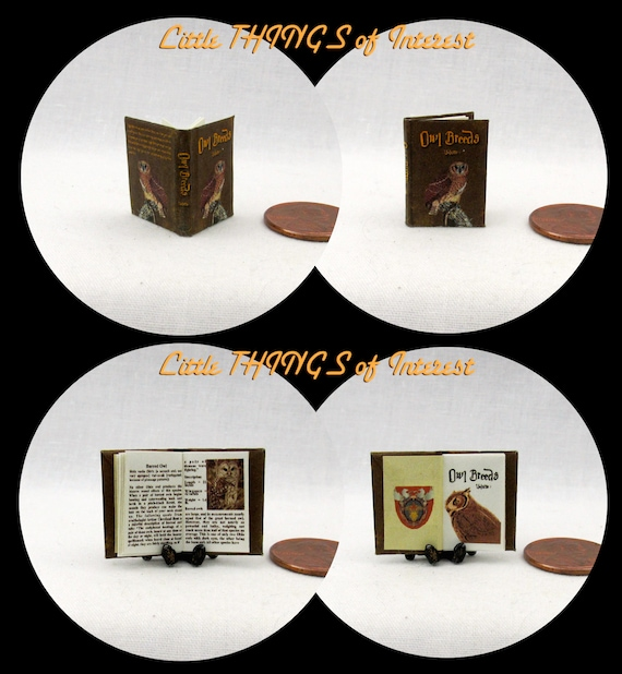 OWL BREEDS Magical Textbook Miniature Dollhouse 1:12 Scale Illustrated Readable Magic Popular Boy Wizard Potter Witch Fortune Teller Gypsy
