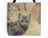 Cat Tote Bag, Photo Bag, Animal Photography, Gift for Cat Lovers, Whimsical, Travel, Morocco, Autumn Accessories, Cat Bag, Animal Lover