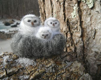 Needle Felted Cozy Owl Family in Nest