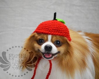 Pet Apple Hat Beanie (XS-XL) Any Colors