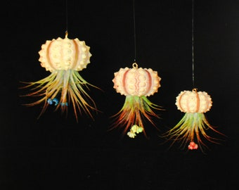 Hanging Air plant, air plant holder, air plant jellyfish, hanging planter, hanging jellyfish, house plants, Sea Urchin Jelly fish