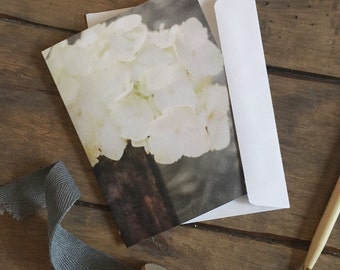 Hydrangea Note Card, white, photo, American Grown Collection