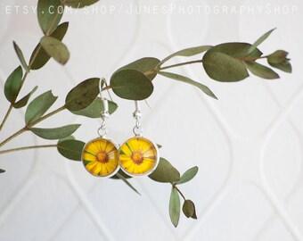 Yellow flower - Photo earrings