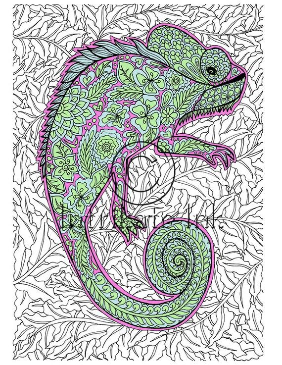 Página de camaleón para colorear animales para colorear