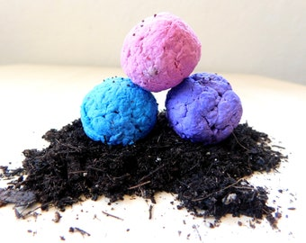 Wildflower Seed Bombs // Wildflower Seeds