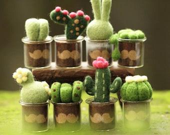 Needle felting kit - cactus moustache set