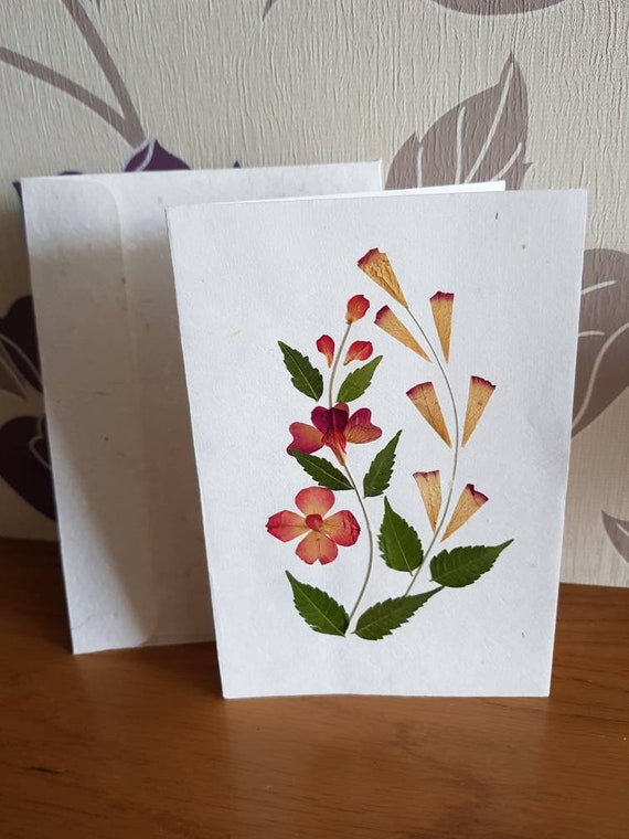 Real pressed flower greetings card dark twin plants design