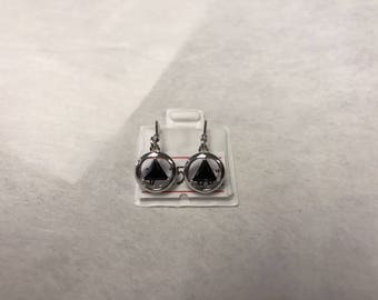 AA Sterling Silver and Black Onyx Earrings
