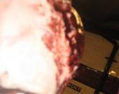 FREE SHIPPING.Zombie Runs High Detail Traumatic Brain Injury Exposed FX Latex Prosthetic.A Slab Zombie Brain.Free Cortex .