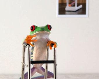 Frog & Walker, Hospital Art, Medical Art, Funny Frog Art