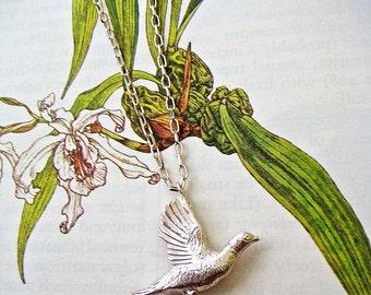 Silver Pheasant Necklace, bird necklace