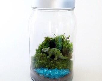 Dinosaur Terrarium Kit with Jar, Glass Terrarium, Moss Terrarium, DIY Terrarium kit
