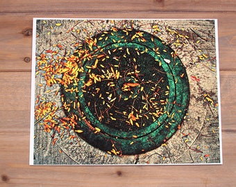 CLEARANCE - Manhole Cover with Fall Leaves Photograph Print