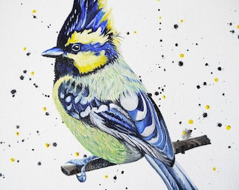 Original Bird Oil Painting