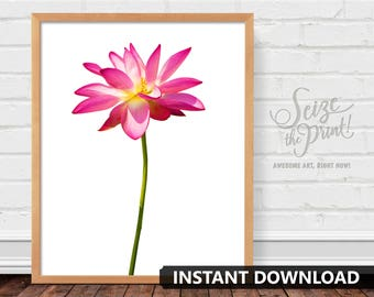 LOTUS FLOWER ART - Lotus Flower Print, Floral Art, Floral Print, Printable, Office Decor, Hotel Decor, Pink Wall Art, Instant Download