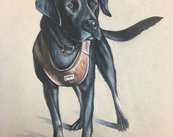 14 x 17 Custom Animal Portrait