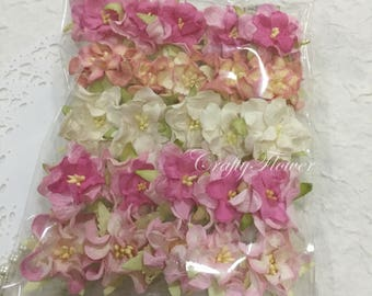25 Variations Listing of Small Curly Gardenia Mulberry Paper Flowers Scrapbooks Wedding Cards Dolls Crafts Roses 00/Gs2