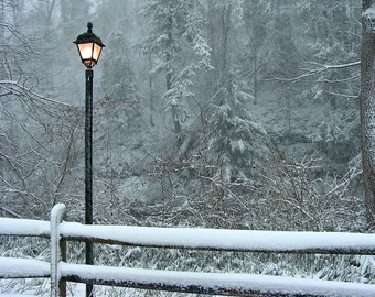 Winter Photography 5x7 Welcome to Narnia - Snow Scene Lamp Post Print