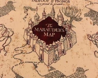 Harry Potter Marauder's Map Pet Shirt