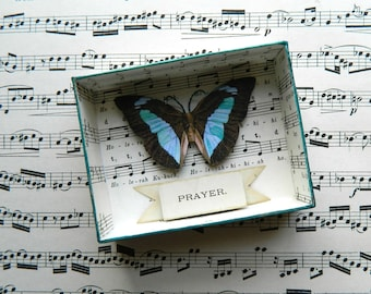 Butterfly Shadow Box, Prayer Shadowbox, Prayer Gift, Matchbox Art, Prayer, Assemblage Art, Small Art, Shadowbox, Matchbox Art, Blue & Cream