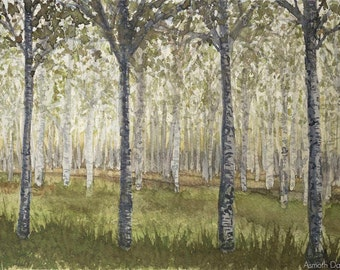 "Birches Woodland Watercolor, Trees Painting , original watercolour art 9"" x 12"""
