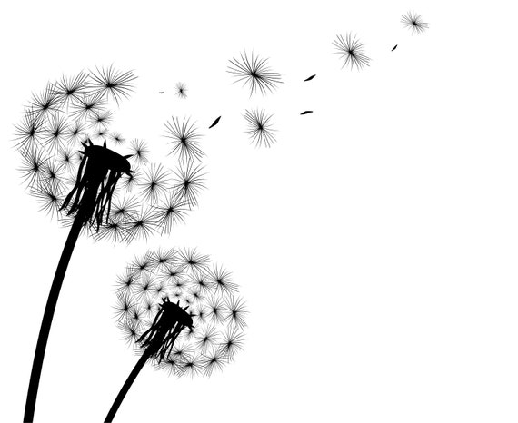 dandelion svg dandelion clipart silhouette svg graphics rh etsy com dandelion clipart black dandelion clipart black and white