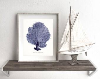 Coastal Decor Sea Fan Sea Coral Giclee Art Print 8x10 Indigo