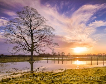 Flooded field at sunset 2, photographic print, home wall print, landscape photo print