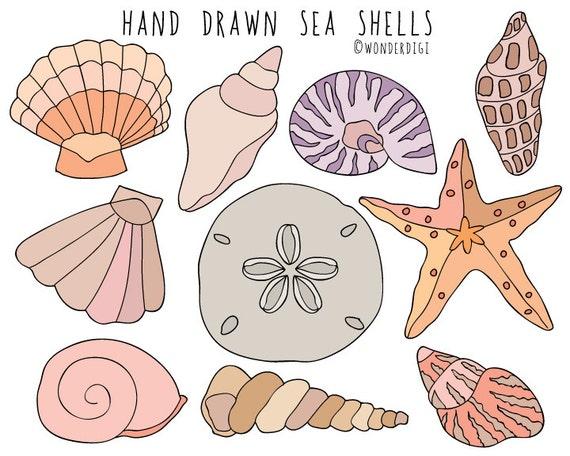 sea shells clipart hand drawn clip art beach clipart shells rh etsy com shells clip art transparencies shells clipart black and white