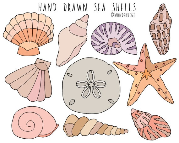 sea shells clipart hand drawn clip art beach clipart shells rh etsy com shells clipart black and white shells clipart free download