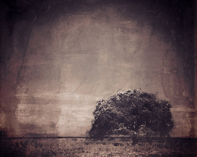 JAVA TREE by Sven Pfrommer - 100x100cm Artwork is ready to hang