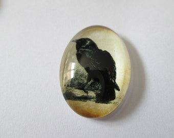 cabochons glass 25 x 18 mm vintage Crow pattern