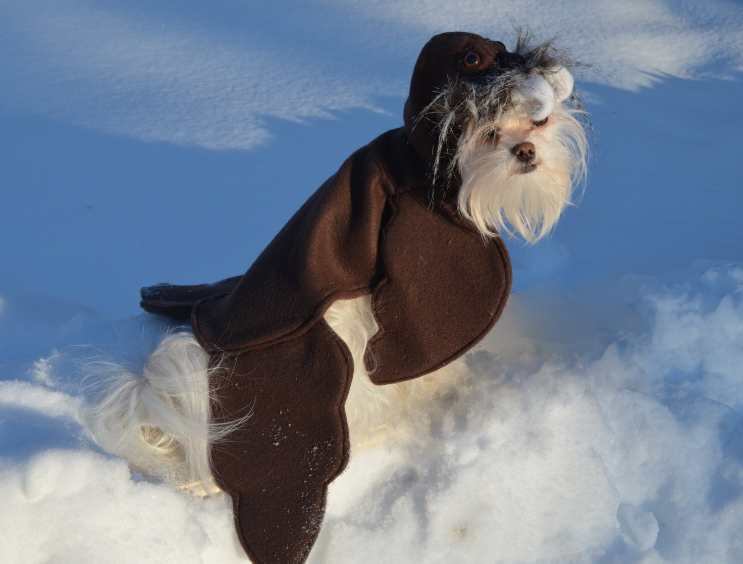 Walrus Dog/Pet Costume for Halloween Parade Rescue Events
