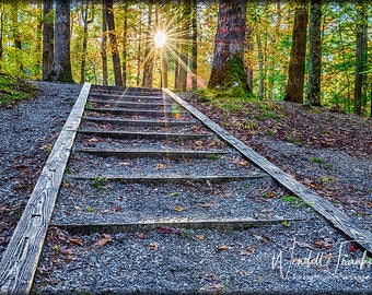 Stairway To Heaven E248. Towards the light, the way forward, the future, progress, encouragement, success, overcoming, ladder, climbing