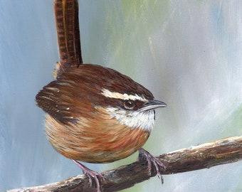 Bird Art Painting Wildlife Carolina Wren SFA Original hand painted acrylic bird painting by Australian Artist Janet M Graham