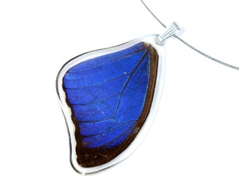 Real blue morpho butterfly pendant