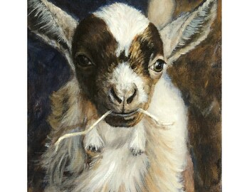 Nigerian Dwarf Goat Farm Art print Dottie Dracos, Baby Goat on the Farm