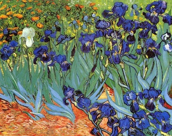 handpainted van gogh oil painting reproduction lily for home decor wall art